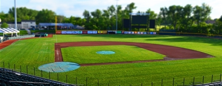 Baseball, Sports, and Entertainment near Royal Park Hotel in Rochester Michigan